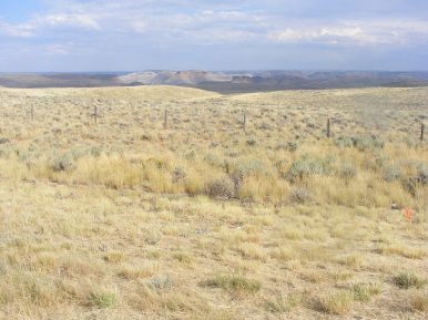 Vast landscape east of Wyoming 530