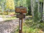 Mileage sign for Copper Creek Trail No. 983 on the Gunnison National Forest