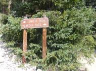 At the junction of Gunnison National Forest Roads 888 and 266