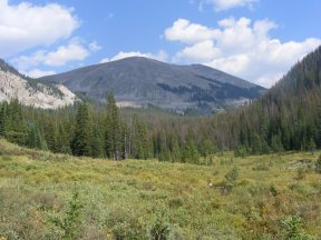 Looking up Middle Quartz Creek from the old wagon road