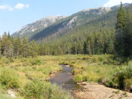 Walking down Gunnison National Forest Road 767, a view of Middle Quartz Creek