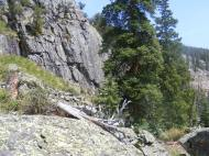 Relatively high up in Comanche Gulch, part of the Fossil Ridge Recreation Management Area