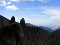 Majestic twin peaks... oh, those are merely Leah's ears silhouetted against the San Luis Valley