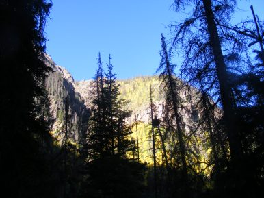 Looking up from Cataract Gulch to the sunny eminences above