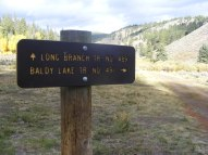 Signage Baldy Lake Trail No. 491