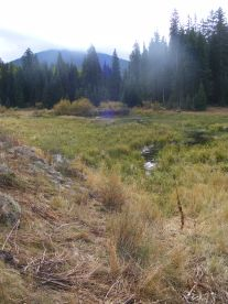 The second unnamed lake, more of a meadow, Carbon Peak on the horizon