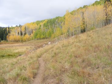 The user-created trail between the Beaver Ponds and the unnamed lakes