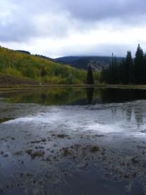 The Beaver Ponds under an overcast sky