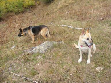 Draco and Leah near the Beaver Ponds