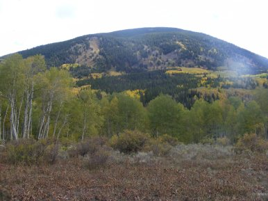 The west face of Carbon Peak, from the first ridge on the Swampy Trail No. 439