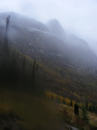 Misty mountain hop, in the San Juan Mountains