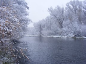 The Gunnison River at Cooper Ranch