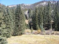 Some of the meadow at April Gulch on Beaver Creek