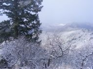 Snow and mist above the Black Canyon of the Gunnison