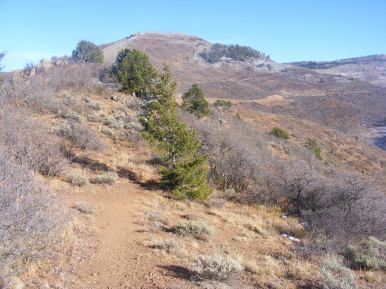Heading back on the Crystal Creek Trail, looking up at Black Mesa; Colorado 92 seen in road cuts to the right