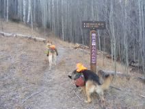 Leah and Draco at the trailhead for the Lion Gulch Trail No. 536 on the Gunnison National Forest