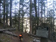 Leah and Draco enter the West Elk Wilderness via the Lion Gulch Trail No. 536