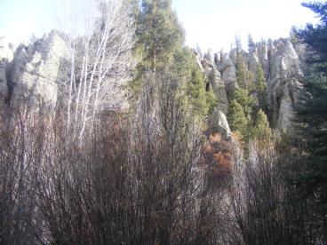 A forest of hoodoos on West Elk Creek