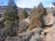 The Curecanti Creek Trail passing some juniper