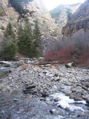 Curecanti Creek near its end in the Black Canyon of the Gunnison