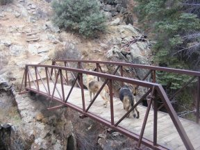 Draco and Leah cross the upper bridge over Curecanti Creek