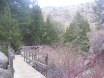 The landing atop the stairs on the Pine Creek Trail