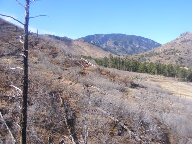In North Red Creek, looking back over the saddle towards Mock Hill in the Wet Mountains of Colorado