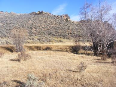 Outcroppings and sagebrush steppe above Camp Creek bottoms