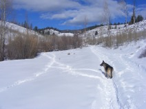 Leah on Willow Creek, a day after a good snow