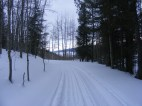 Skiing back on Road 737