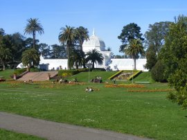 The Conservancy of Flowers in Golden Gate Park
