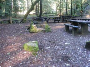 The picnic area in Armstrong Redwoods State Natural Reserve