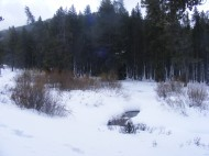 Middle Quartz Creek emerging, briefly, from the covering of snow