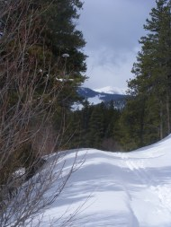 Ski tracks on Gunnison National Forest Road 767, looking at Chicago Park and Fairview Peak
