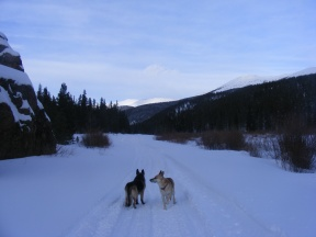 Leah and Draco on Quartz Creek as evening approaches