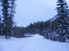 Our ski back to the trailhead was mostly in twilight