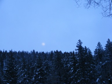 The Moon rises above Quartz Creek