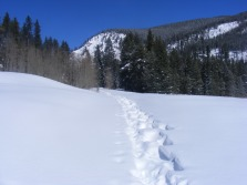 Snow filled tracks on Gold Creek