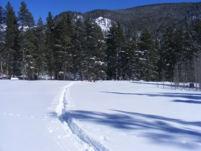 Ski tracks at Gold Creek Campground