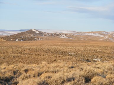 Looking west from G Flats, groups of pronghorn in sage steppe