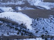 Tracks on snow cornice; rolling hills on the north side of Cold Spring Mountain