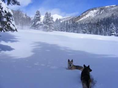 Draco and Leah resting up on Gold Creek, looking towards Fairview Peak