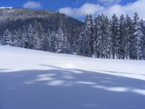 Gold Creek Campground, covered in snow, on the Gunnison National Forest