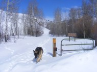 Leah at the Winter trailhead for Willow Creek, Gunnison National Forest