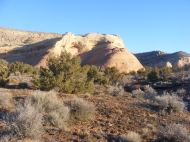 Sandstone outcropping in Rabbit Valley
