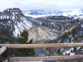 From the Tower Falls overlook, looking downstream on the Yellowstone River