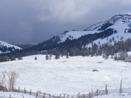 Looking past the Buffalo Ranch; the Junction Butte Pack was stationary somewhere in the second row of conifers to the left of the top of the snowy slope; note the black dot, just above that