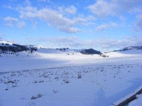 The west end of Lamar Valley; a gorgeous late Winter day